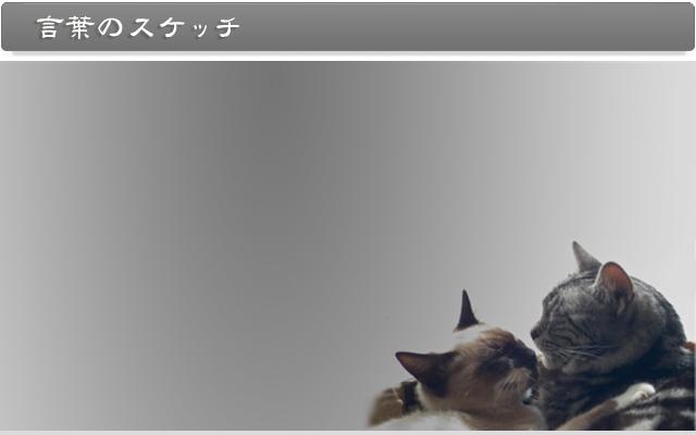 金子豊文公式サイト|言葉のスケッチ
