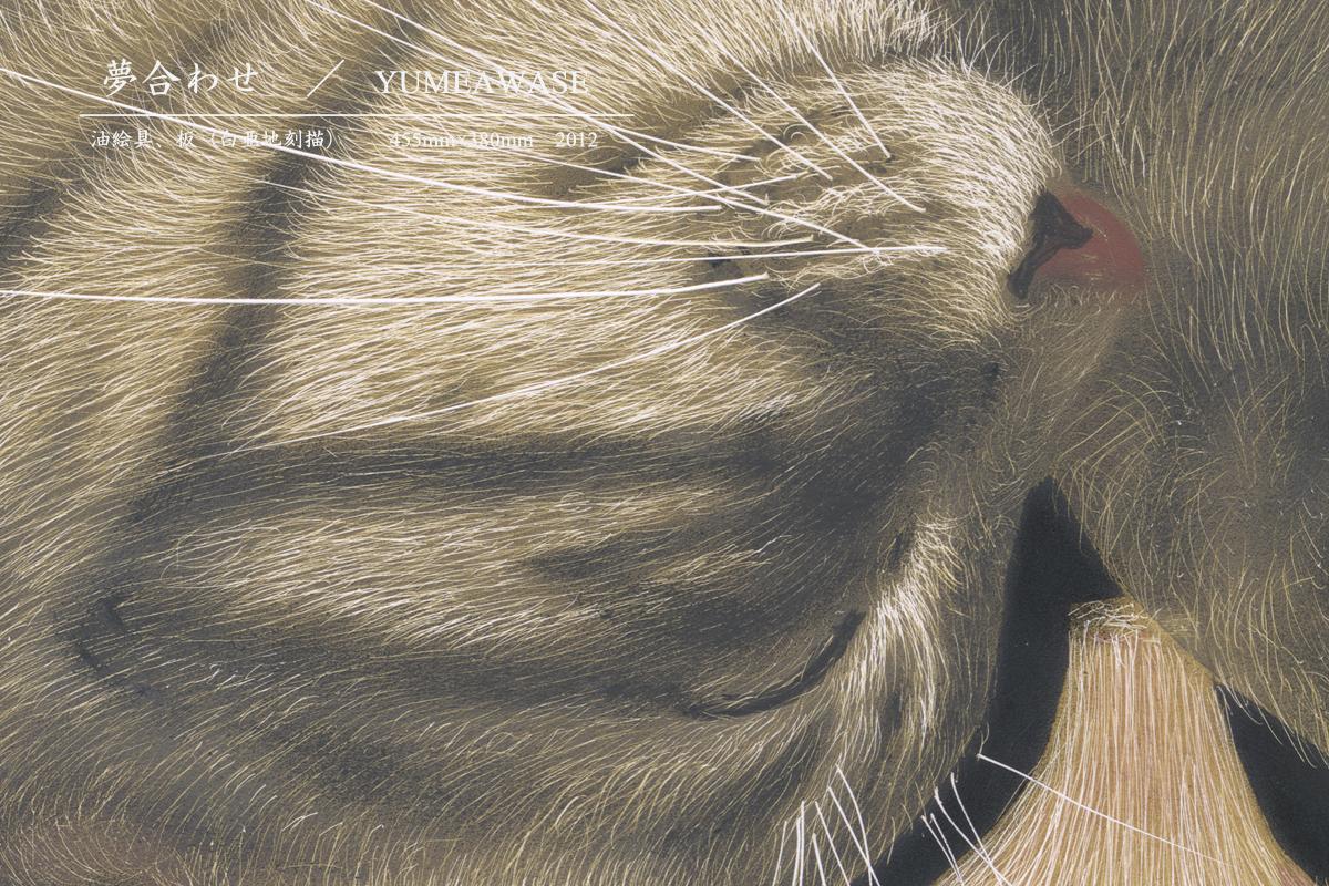 猫|金子豊文画『夢合わせ』